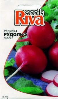 Редиска Рудольф