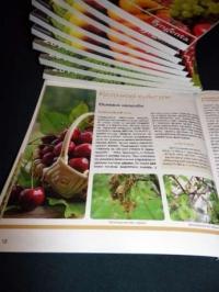 Справочник защиты растений на дачных и приусадебных участках