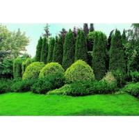 Удобрение Agrecol для подкисления Хвойных растений 1,2 кг
