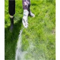 Удобрение Agrecol (Hortifoska) для Газонов и борьбы со мхом 1 кг