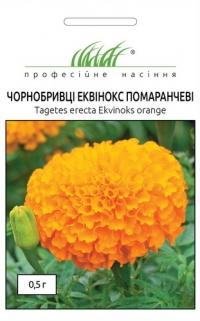 Бархатцы Эквинокс оранжевые