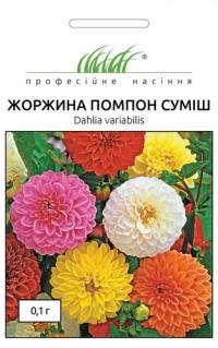 Георгина Помпон смесь