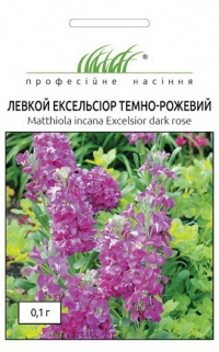 Левкой Эксельсиор тёмно-розовый
