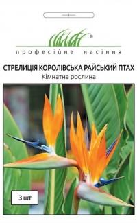 Стрелиция королевская Райская птица