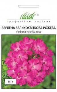 Вербена крупноцветковая розовая