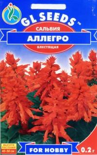 Сальвия Аллегро красная