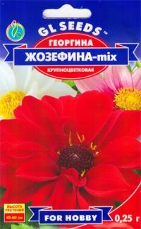 Георгина Жозефина-mix