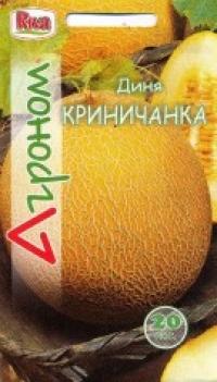 Дыня Криничанка