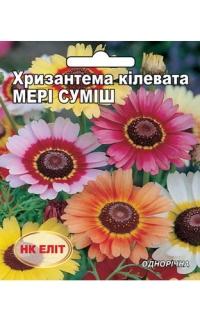 Хризантема килеватая Мери смесь