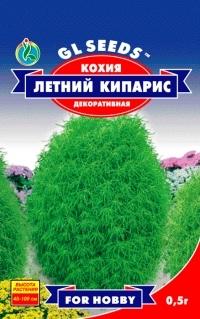 Кохия Летний кипарис