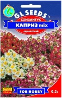 Схизантус Каприз mix гибридный