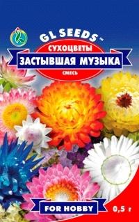 Сухоцветы Застывшая музыка