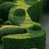 Удобрение Agrecol для живой изгороди, декоративных растений и кустарников 5 кг