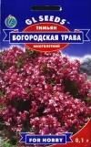 Тимьян Богородская трава