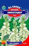 Сальвия Амбассадор белая