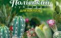 Субстрат Полесский для кактусов 2,5 л